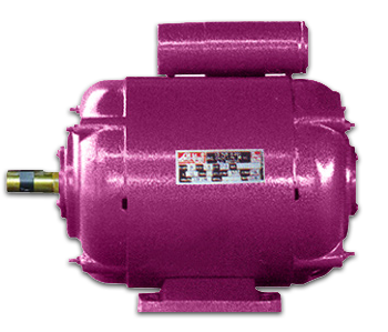 SINGLE PHASE (DP) MOTOR